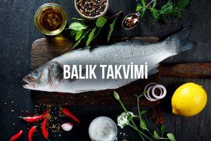 Balık Takvimi