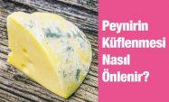 Peynirin Küflenmesi Nasıl Önlenir?